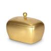 Bio Urne Goldtruhe - gold